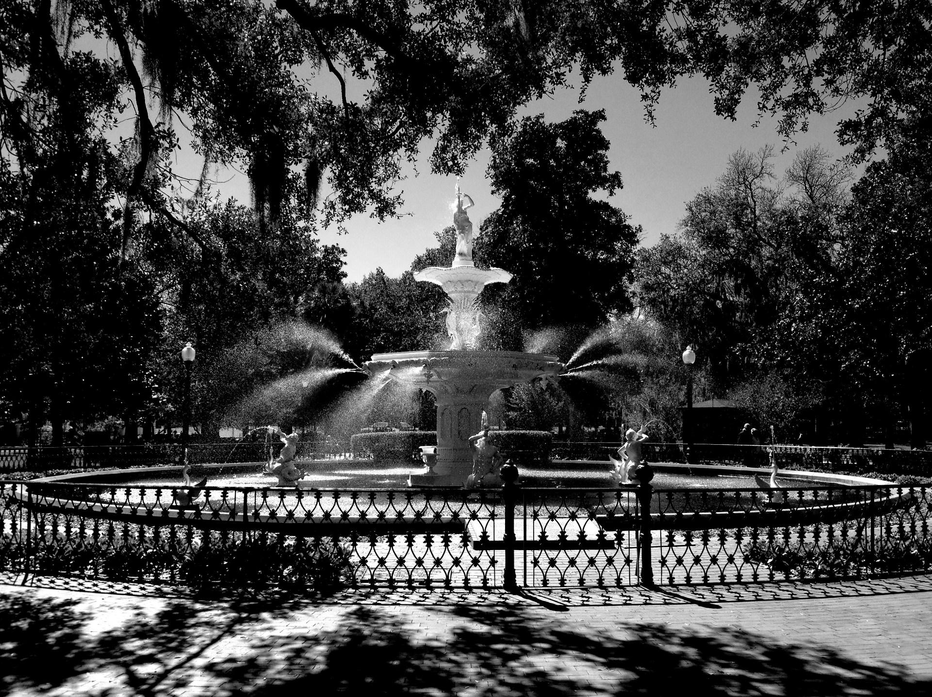 forsyth park etsy
