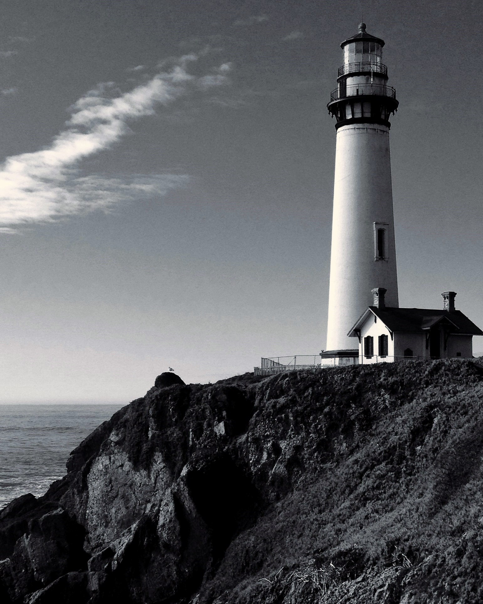 pigeon point bw etsy
