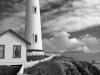 pigeon point 2 bw etsy